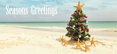 Double DL Christmas Card Design - Beach