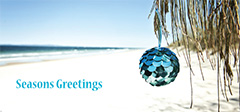 Double DL Christmas Card Design - Blue Ball